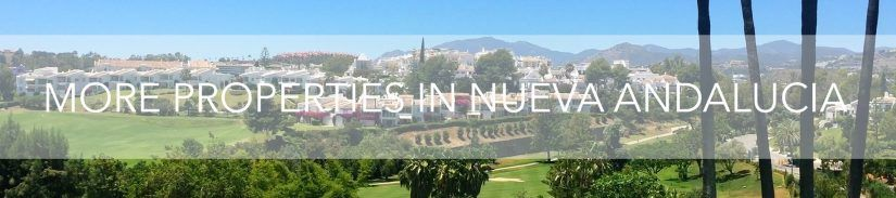 More Properties in Nueva Andalucia