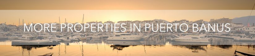 More properties in Puerto Banús