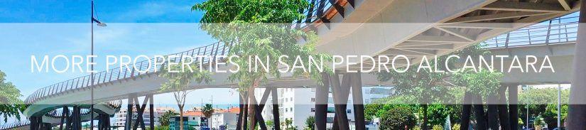 More Properties in San Pedro Alcantara