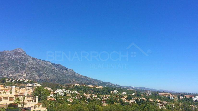 Properties in Nueva Andalucia